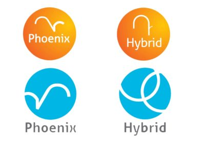 Logo Proposals for Synergy Fx new brands